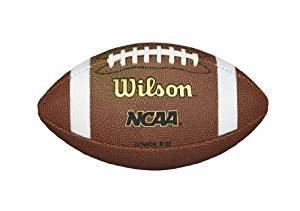 $8.99 Wilson NCAA Official Football