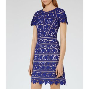 Orchid Sapphire Lace Dress