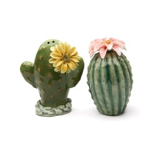 Cosmos Cactus Salt & Pepper Shakers | zulily