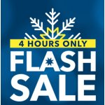 Best Buy 4-Hour Flash Sale