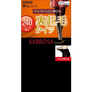 GUNZE SABRINA Extra Warm Stocking 240D