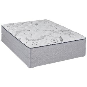 Sealy Cushion Firm Mattress - 1800mattress