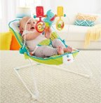 $25.49 Fisher-Price Animal Party Bouncer