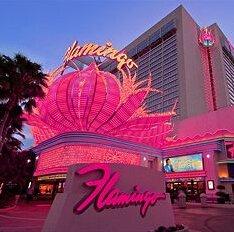 $30+Special Las Vegas Hotel Deals @ Hotels.com