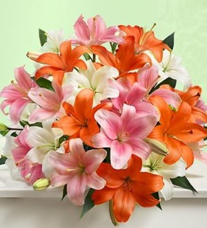 Save Up to 33% Vibrant Summer Lilies, Double Your Bouquet just $29.99