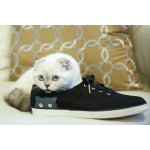 Keds Taylor Swift Sneaky Cat