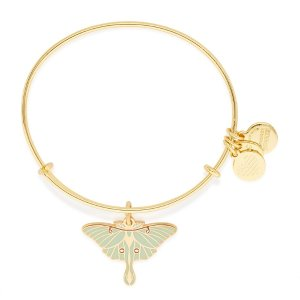 Gold Luna Moth Charm Bangle | ALEX AND ANI
