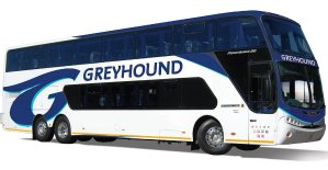 40% offbus fares @ Greyhound