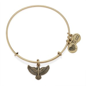 Spirit Of The Eagle Charm Bangle | Team Red, White, and Blue | ALEX AND ANI