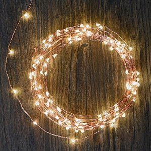 $14.99(reg.$34.99) TaoTronics LED String Lights