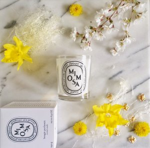 Up to $200 Off Diptyque Mimosa Scented Candle @ Bergdorf Goodman