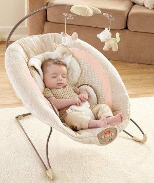 Fisher-Price My Little Snugapuppy Deluxe Newborn Rock N Play Sleeper