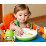 Lansinoh mOmma Mealtime Warm Plate, Green, BPA Free and BPS Free