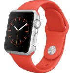 Apple Watch (first-generation) 38mm Silver Aluminum Case
