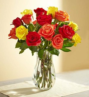 $29Autumn Roses: Buy 12, Get 6 Free + Free Vase
