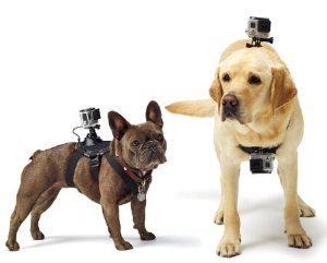 $30.45 GoPro Fetch (Dog Harness)
