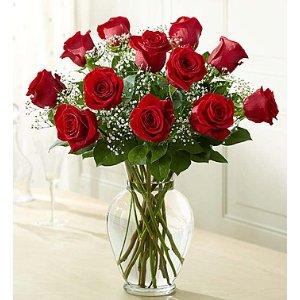 Rose Elegance™ Premium Long Stem Red Roses