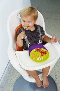 Boon Adjustable High Chair & Seat Liner