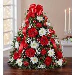 Christmas Flowers & Gifts @ 1-800-Flowers