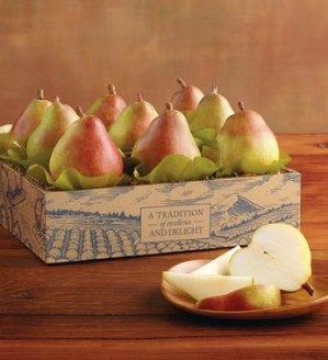 FreeHarry and David Maverick Royal Riviera Pears