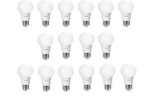 16-Pack Philips 60W Equivalent A19 LED Light Bulb (Daylight)