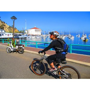 One Day Catalina Island Scavenger Hunt Adventure (choose from walking tour, golf cart tour and bike tour)