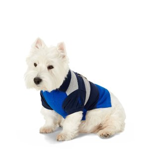 Striped Cotton Dog Polo - For the Pet