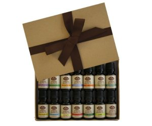 Fabulous Frannie High-Quality 14-Pack Aromatherapy Starter Gift Set