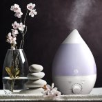 Lowest price! $22.49 Sol Beauty® Premium Cool Mist Ultrasonic Humidifier