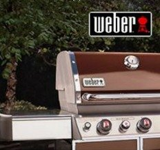 $100 Off +Free Delivery and Assembly All Weber Genesis Gas Grills @ Lowes