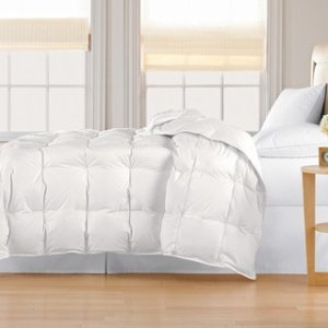 Classic 240 Thread Count Light-weight All-season White Down Comforter - 914562 - Overstock.com Shopping - Great Deals on Blue Ridge Home Fashions Down Comforters