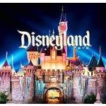 分享带孩子去迪士尼的飞机之旅+租车经验
