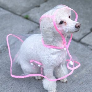 $11.9 TOPSUNG Waterproof Puppy Raincoat Transparent Pet Rainwear Clothes for Small Dogs/Cats