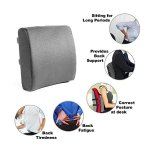 Easy Posture Memory Foam Lumbar Support Cushion - Gray
