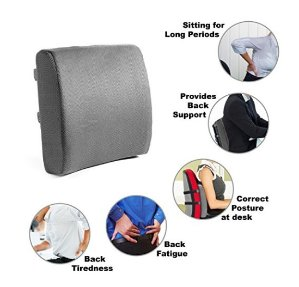 $15.96 Easy Posture Memory Foam Lumbar Support Cushion - Gray