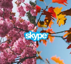 as low as $7 30% Off Skype Prepaid and Subscription Cards