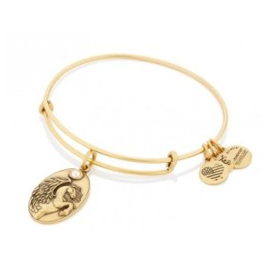 Pegasus Charm Bangle