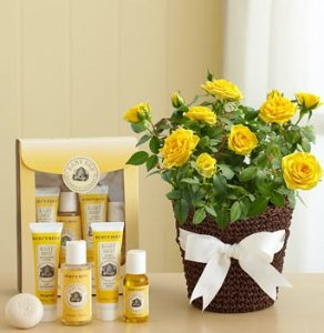 $9.79 Burt's Bees Baby Bee Getting Started Gift Set
