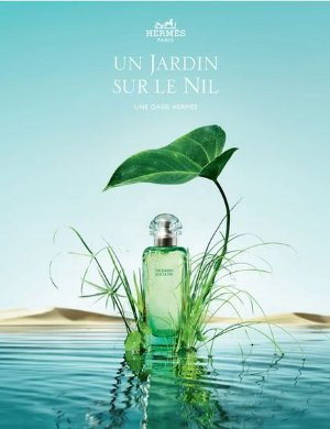 $65.99 Un Jardin Sur Le Nil By Hermes For Women, Eau De Toilette Spray, 3.3 oz