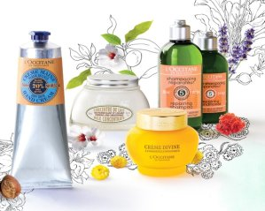 Free Travel Size Creamwith Any Purchase of $40 @ L'Occitane