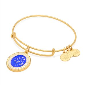 Gemini Celestial Wheel Charm Bangle | ALEX AND ANI