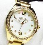 $118 Coach Women's Tristen Watch 14501661 (Dealmoon Exclusive)