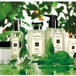 With any $65 purchase @ Jo Malone London
