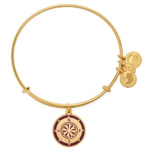 Cabernet Compass Charm Bangle | ALEX AND ANI