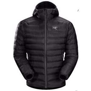 Arcteryx Men's Cerium LT Hoody - at Moosejaw.com