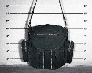 35% OffAlexander Wang Handbags and Backpacks @ OTTE NY Dealmoon Doubles Day Exclusive!