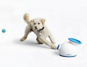 Up to $50 OffiFetch Interactive Ball Launchers and Balls @ Amazon