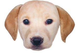 $4.14Lab Pill Plush可爱狗狗造型枕头