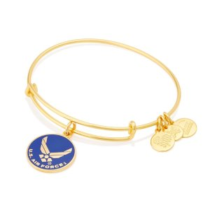 US Air Force Charm Bracelet | ALEX AND ANI