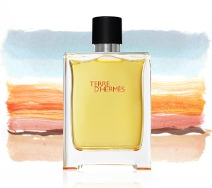 $44.63 Hermès Men's Terre d'Hermès Eau de Toilette Spray, 3.3 fl. oz.